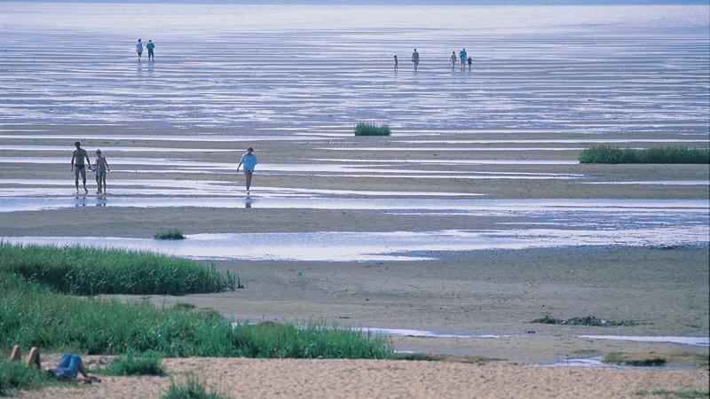 Fanø i Vadehavet